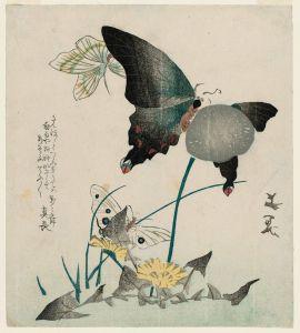 Pintura de Tani Bunchô (siglo XIX)