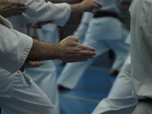 Movimientos de karate, blog la mansión del gaviero